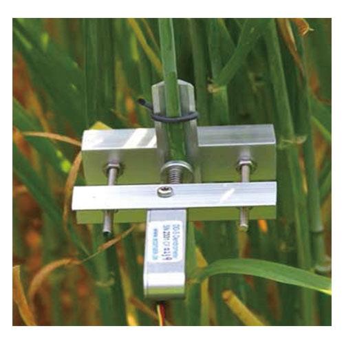 DD-S茎干直径生长变化记录仪
